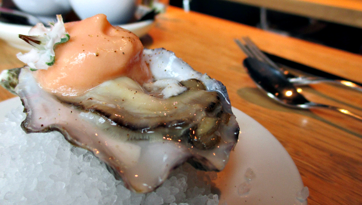 MOER oester lunch catch52